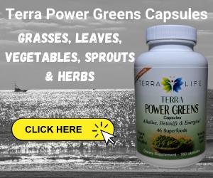 Buy Terra Power Greens Capsules